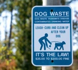 Dog Waste City Sign